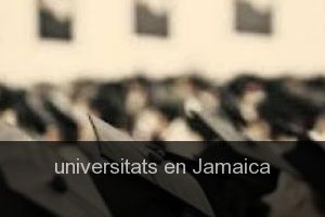 Universitats en Jamaica