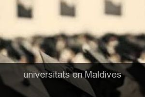 Universitats en Maldives